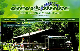 Kickys Ridge Blueberry Meadows